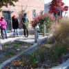 Case Study: How Bioswales Are Helping To Clean Brooklyn's Gowanus Canal