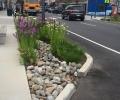 New Jersey Municipalities Share Green Infrastructure Planning Progress