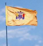 NJ state flag