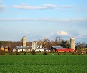 A New Jersey farm