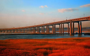 The New Jersey Turnpike as it passes over the Meadowlands. Photo source: flickr user illinigardner