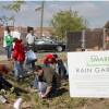 Volunteers planting a rain garden.