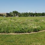 New Report Highlights Green Infrastructure Financing Opportunities