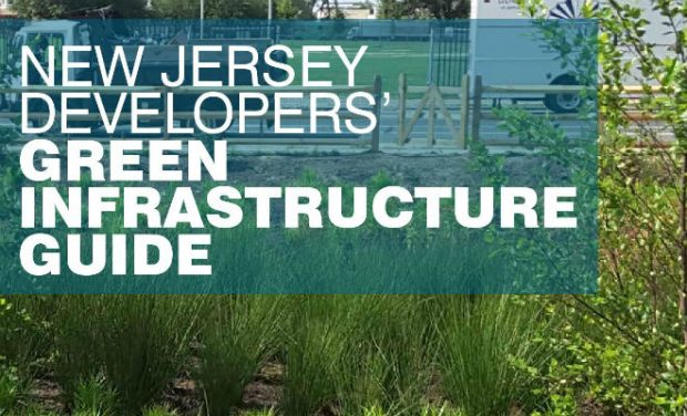 Developers' Green Infrastructure Guide