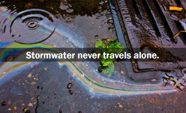 Stormwater never travels alone.