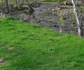 Floodplain Planning for Resilient Communities
