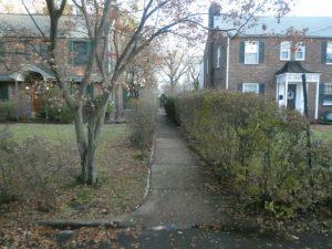 A pedestrian walkway between homes.